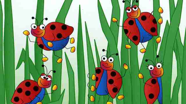 5 Little Ladybugs
