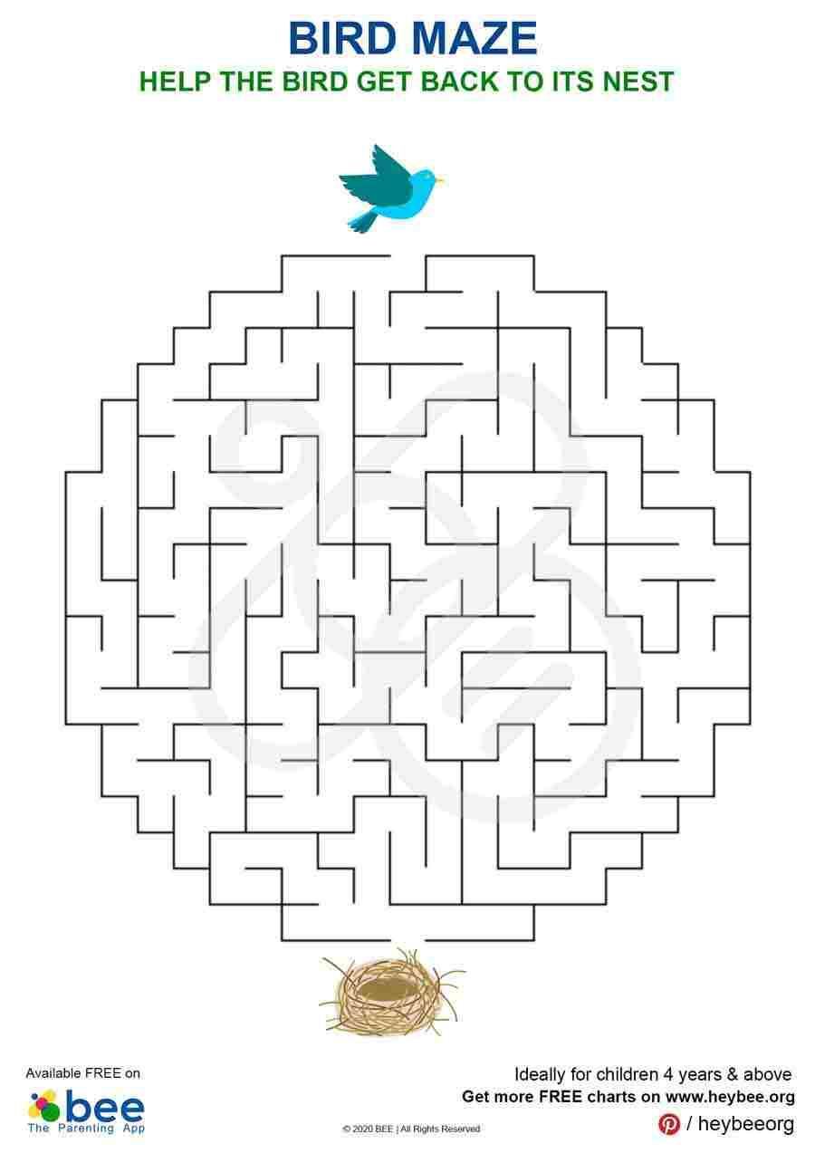 Bird Maze Puzzle
