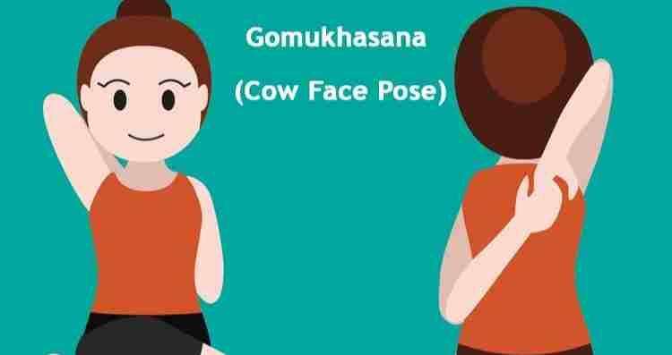 Cow Face pose - Gaumukhasana