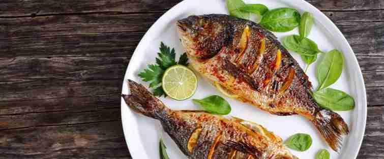 Fish Amazing Facts