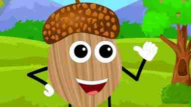 I'm A Little Acorn Brown