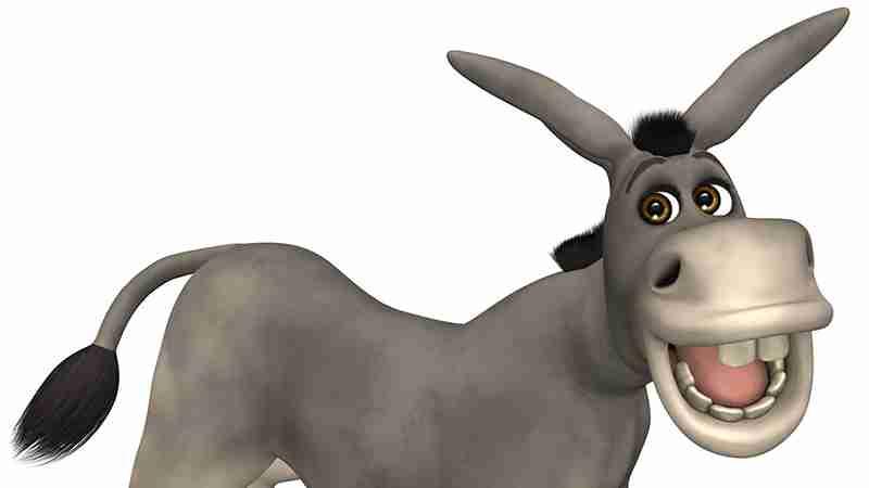 If I had a Donkey