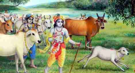 Krishna, Arjuna, the widow and her cow
