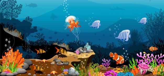 The trip to the aquarium