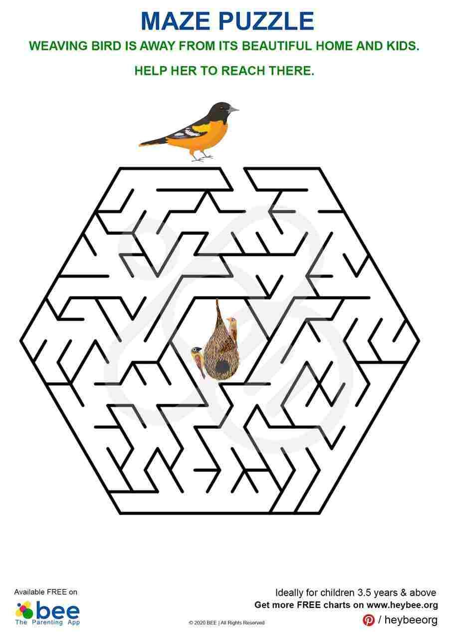 Weaving Bird Maze Puzzle
