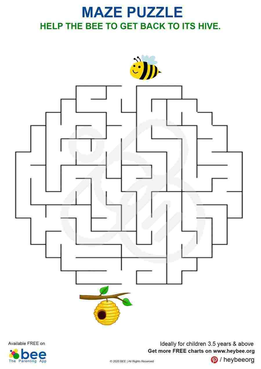 Bee Hive Maze Puzzle