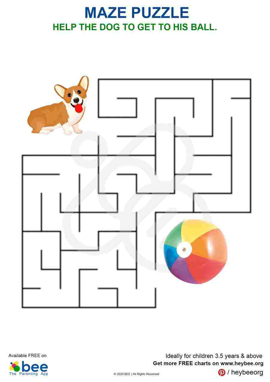Dog Ball Maze Puzzle