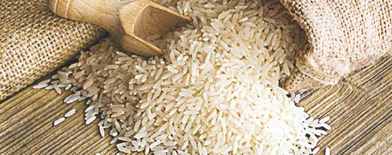 Rice Amazing Facts