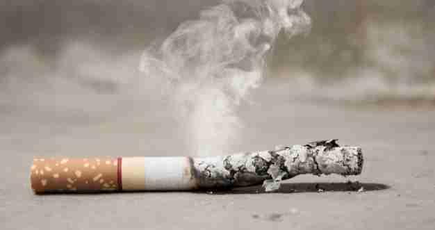 Cigarette smoke allergy