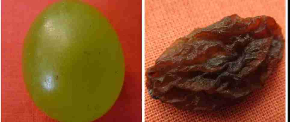 Turning grapes into raisins