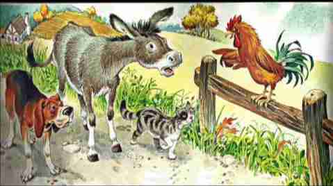 The donkey, the dog, the cat, and the rooster